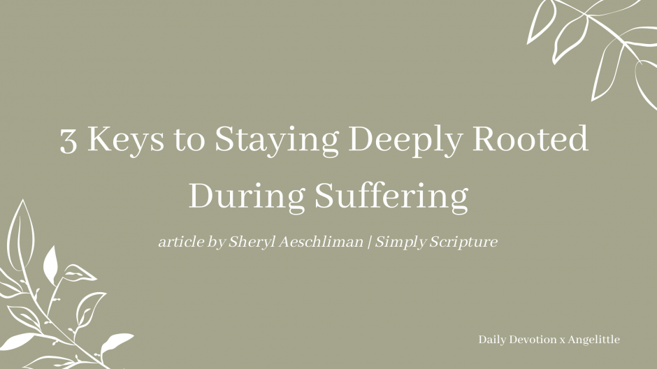 3 Keys to Staying Deeply Rooted During Suffering by Sheryl Aeschliman | Deeply Rooted Devotional series | Angelittle